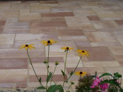 Betonpflaster Sandsteinoptik mit Pflasterfugenmörtel verfugt