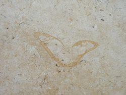 """Granitplatten """"Orange Rock"""" im Römischen Verband. Plattengrößen 30x30cm bis 60x90cm."""