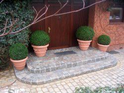 Buntes gebrauchtes Granitreihenpflaster gemauert und verfugt mit Gummistabroste als Fußabtreter